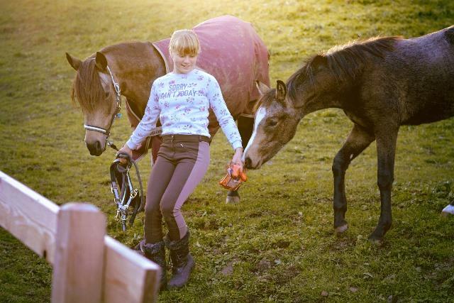colo-adaptee-equitation